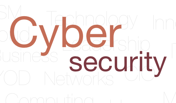 Cyber Security is not a Risk